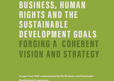 Business, Human Rights & the SDGs (BSDC)