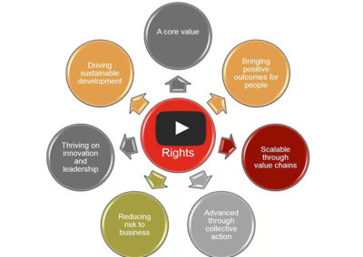Insight on the SDGs and Human Rights (Shift)
