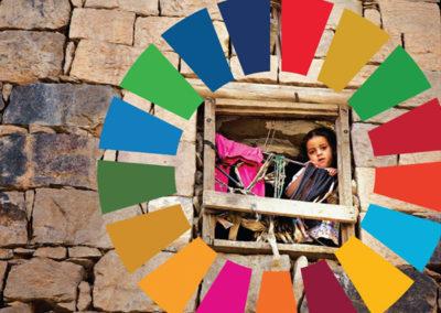 The Sustainable Development Goals Report (UN)