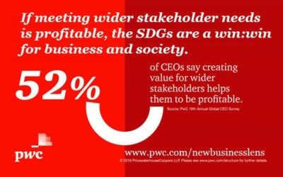 Is there profit in the SDGs?