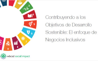 Inclusive business and the SDGs: A view from the WBCSD's Latin American Global Network partners