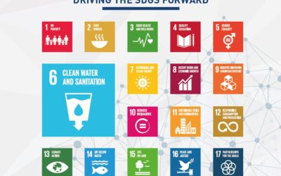 Firmenich and Global Compact Network Switzerland take action for water and sanitation