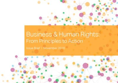 Business & Human Rights: From Principles to Action