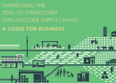 Harnessing the SDGs to Strengthen Smallholder Supply Chains: A Guide for Business