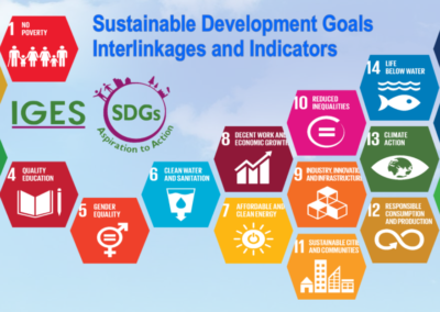 SDGs Interlinkages and Data Visualization