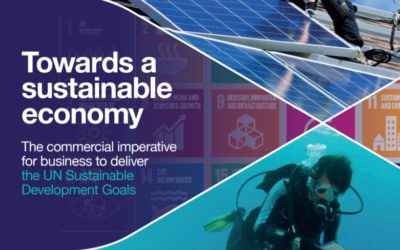 A commercial case for delivering the SDGs