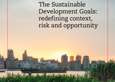 The Sustainable Development Goals: redefining context, risk and opportunity