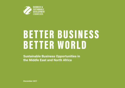 Better Business, Better World: Middle East and North Africa