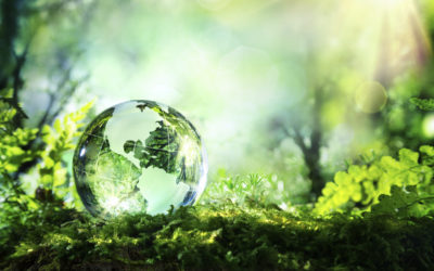The State of Green Business 2018