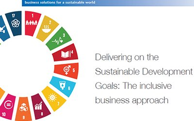 The Sustainable Development Goals through an inclusive business lens