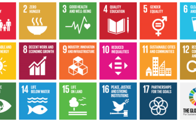 OECD and UNDP Launch Plan to Align Global Finance with SDG Goals