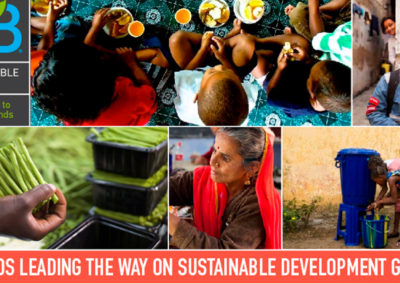 NGOs Leading the Way on SDGs (Sustainable Brands)
