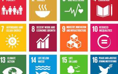 SDG prioritisation – is business on the right track?