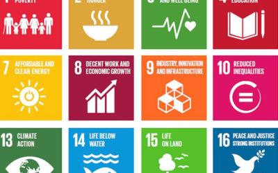 Monetizing sustainable development
