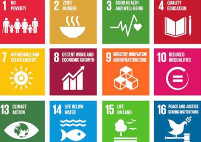 SDG Selector (PwC)