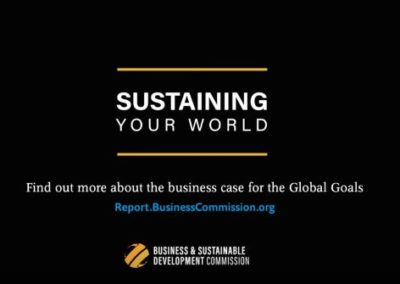 Sustaining Your World: How Business Can Help Solve the Planet's Challenges