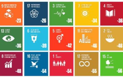 Evaluating Progress Towards the Sustainable Development Goals