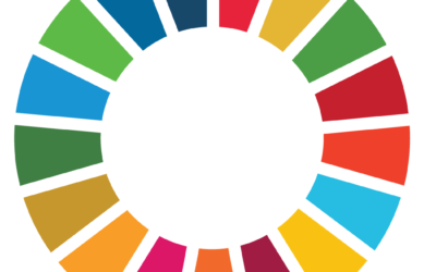 Taking the SDGs to the next level for business