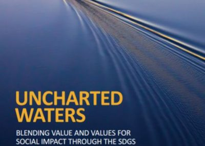 Uncharted Waters: Blending value and values for social impact through the SDGs