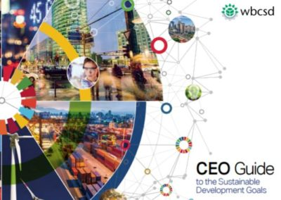 CEO Guide to the SDGs