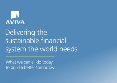 Delivering the Sustainable Financial System the World Needs