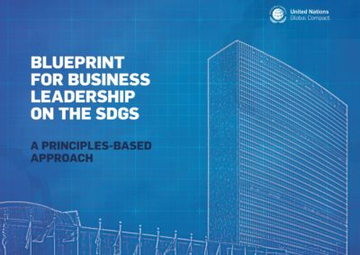 Blueprint for Business Leadership on the SDGs: A Principles-Based Approach