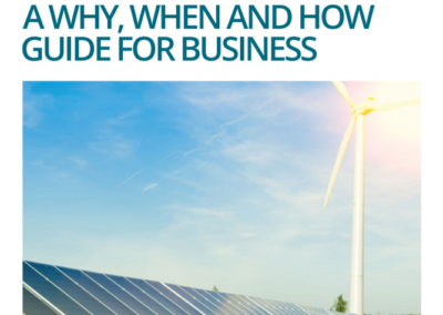 Report: The UN SDGs: A Why, When and How Guide for Business