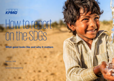 How to report on the SDGs?