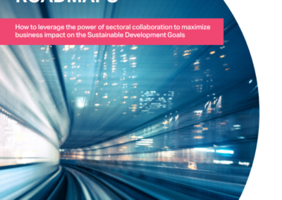 SDG Sector Roadmap Guidelines