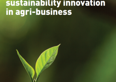 A framework for sustainability innovation in agri-business
