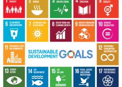 Implementing the SDGs through the next Multi-Annual Financial Framework of the EU
