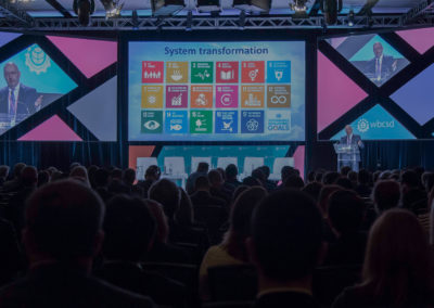 Business and the SDGs : A survey of WBCSD members and Global Network partners