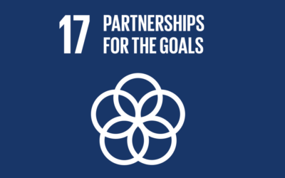 Guide to the SDGs: SDG17 – Partnerships for the Goals