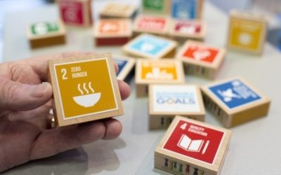 With the SDGs through political and economic flux: Three recommendations for business