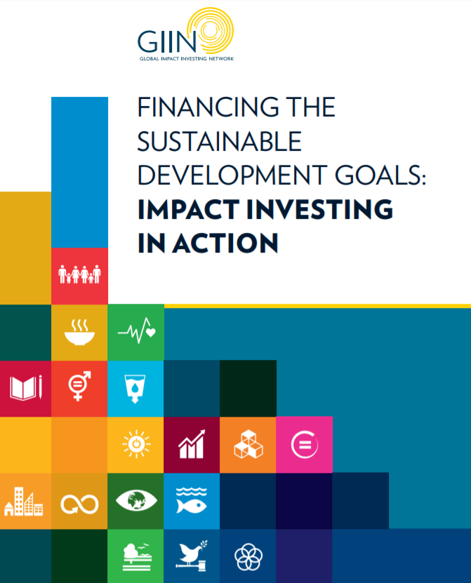 Financing the Sustainable Development Goals: Impact