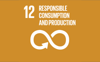 Guide to the SDGs: SDG12 – Responsible Consumption and Production