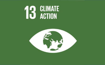 Guide to the SDGs: SDG13 – Climate Action