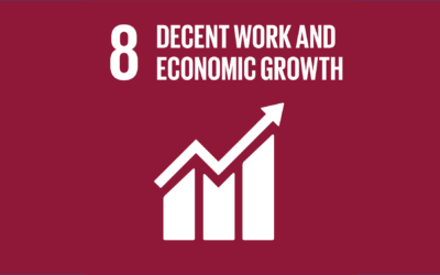 Guide to the SDGs: SDG8 – Decent Work and Economic Growth