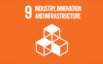 Guide to the SDGs: SDG9 – Industry, Innovation, and Infrastructure