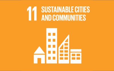 Guide to the SDGs: SDG11 – Sustainable Cities and Communities