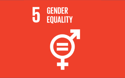 Guide to the SDGs: SDG5 – Gender Equality