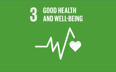 Guide to the SDGs: SDG3 – Good Health and Well-being