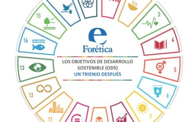 Analysis of SDG implementation and key levers for acceleration in the public and private sector