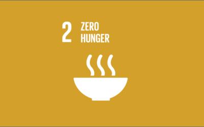 Guide to the SDGs: SDG2 – Zero Hunger