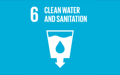 Firmenich's contribution to SDG 6 – Clean water and Sanitation