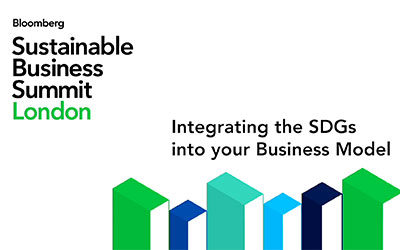 Integrating the SDGs into your Business Model