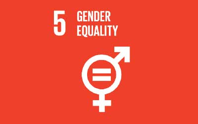 Gender Equality as an Accelerator for Achieving the Sustaibable Development Goals – Discussion Paper
