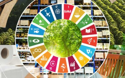 WBCSD's Forest Solution Group leads development of SDG roadmap to catalyze forest sector's impact on the SDGs