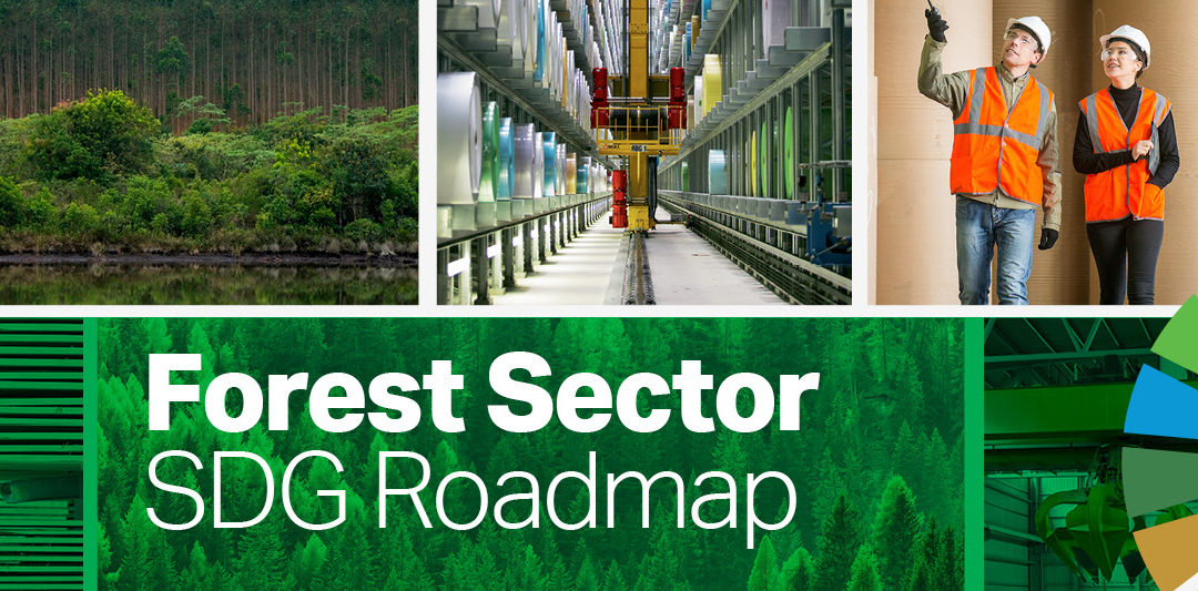 New roadmap to maximize the forest sector's contribution to the Sustainable Development Goals