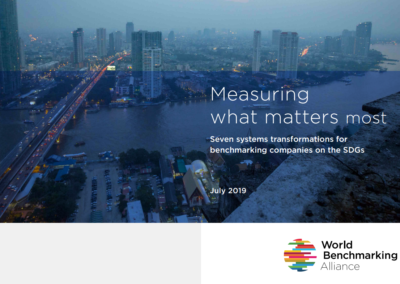 Measuring what matters most. Seven systems transformations for benchmarking companies on the SDGs